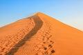 Desert Footprints Royalty Free Stock Photo