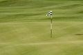 Desert golf course green Royalty Free Stock Photo