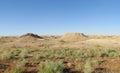 Desert landscape poor green vegetation Royalty Free Stock Photo