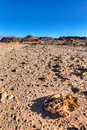 Desert landscape at timna national park in israel Royalty Free Stock Image