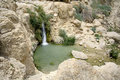 Desert oasis Royalty Free Stock Photography