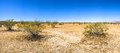 Desert plain in mojave california creosote bushes stretch across the panorama of southern s deseert Stock Image