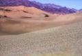 Desert Sands Close Up
