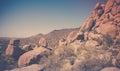 Desert Scenery Near Scottsdale...