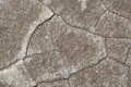 Desert texture of dried earth photographed during the day in the Stock Photography