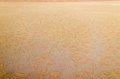 Desert texture natural background aerial view of a namibia africa Stock Photo