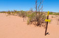 Desert trail and direction arrow sign Royalty Free Stock Photo