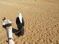 Desert traveler Royalty Free Stock Photo