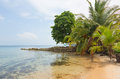 Deserted beach boca del drago on the archipelago bocas del toro panama Stock Photography