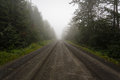 Deserted dirt road in the fog wilderness of alaska on a summer day Stock Photos