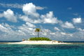 Deserted tropical island one tree in the san blas Stock Image