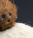 Desiccated coconut and whole coconut heap of isolated on black background Royalty Free Stock Photography