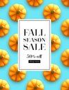 Design banner Autumn sale. Fall poster design on the pumpkin seamless patttern. Vector illustration Royalty Free Stock Photo