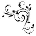 Design element (swirls)-4 Royalty Free Stock Images