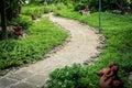 Design flowery in garden the rock pathway Stock Photo