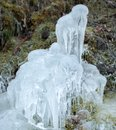 A design in ice residue from waterfall spray coats this plant with pounds of creating natural d northwest columbia gorge the Stock Image