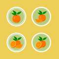 Design stickers with juicy orange for the company in vector format Stock Image