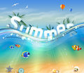 Design of Summer, letters underwater with palm trees, wildlife Royalty Free Stock Photo