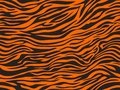 Design of the tiger skin exture pattern seamless repeating orange black