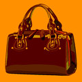 Designer female bags vector no gradient color full Royalty Free Stock Photos