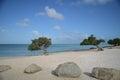 Desolate Eagle Beach in Aruba Royalty Free Stock Photo
