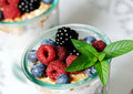 Dessert with berries two glasses yogurt cereals and close up Stock Image