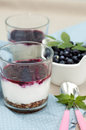 Dessert with blueberry and yogurt Stock Images