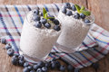 Dessert with chia seeds and blueberries close-up. horizontal Royalty Free Stock Photo