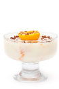 Dessert della panna cotta Fotografie Stock Libere da Diritti