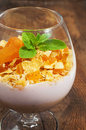 Dessert with muesli yogurt and dried apricots in a glass isolated on white Royalty Free Stock Image