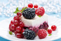 Dessert a piece of cake with fresh berries close up horizontal Stock Photography
