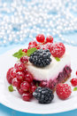 Dessert a piece of cake with fresh berries vertical Stock Photography