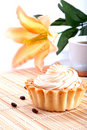 Dessert. Tasty cakes Stock Images