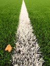 Detail of artificial grass field on football playground. Detail of a line in a soccer field, yellow birch leaf. Plastic gras Royalty Free Stock Photo