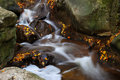 Detail of autumn waterfall a wild during colors Royalty Free Stock Image