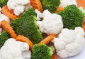 detail of broccoli, carrot and cauliflower Royalty Free Stock Photo