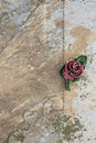 Detail of a carved colored rose placed on the surface of a grave Royalty Free Stock Photo