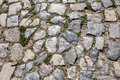 Detail of cobblestone path Royalty Free Stock Photo