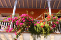 Detail of a colonial house. balcony with flowers Stock Photo
