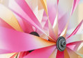 Detail of colorful pinwheel vibrant colors on a Royalty Free Stock Photos