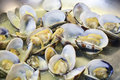 Detail cooking of Clams in a pan Royalty Free Stock Photo