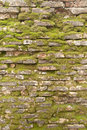 Detail of a dated wall in burano island venice Royalty Free Stock Photo