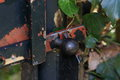 Detail of fence latch the on an iron surrounding by shrubbery in a garden the paint on the is peeling off Stock Photo