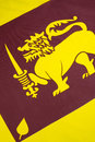 Detail on the flag of sri lanka also called lion consists a gold lion holding a kastane sword in its right fore paw in front Royalty Free Stock Image