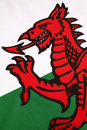 Detail on the flag of wales united kingdom in incorporates red dragon cadwaladr king gwynedd along with tudor Royalty Free Stock Photo