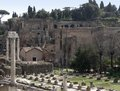 Detail of the forum romanum in rome italy at summer time Royalty Free Stock Photography
