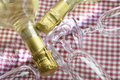 Detail of the neck of a champagne bottle Royalty Free Stock Photo