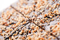 Detail od hazelnut on cake macro closeup of min deep of field Royalty Free Stock Photo