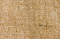 Detail old piece brown fabric Royalty Free Stock Images