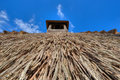 Detail of reed thatch with blue sky Stock Images